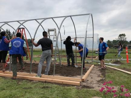 dfc greenhouse pic w kaia